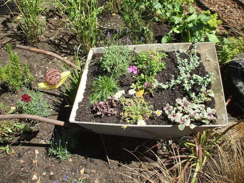 final pics of pulham garden 015.jpg